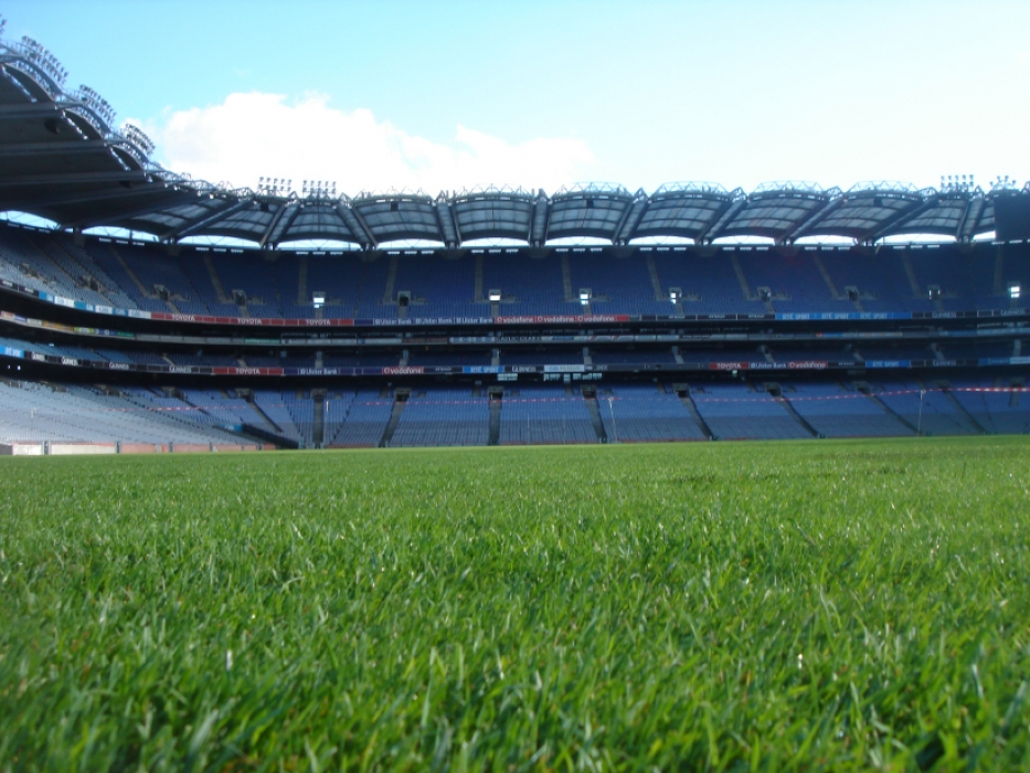 Croke Park Pitch Close Up