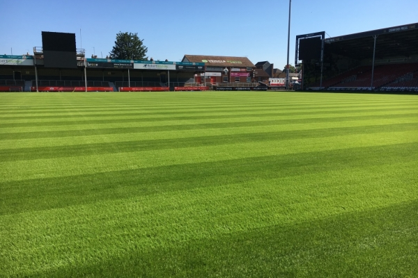 HERO Hybrid Grass at Kingsholm Stadium