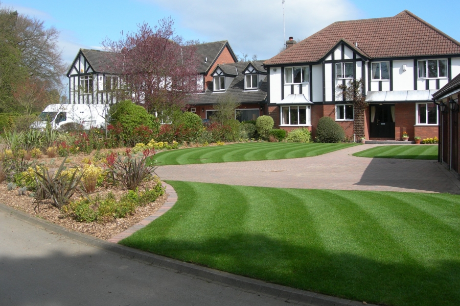 Lawn Turf Specifications