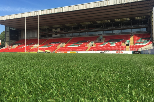 Leicester Tigers stay loyal to a natural pitch image 1
