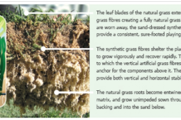 County Turf Secure UK and European License for Eclipse Reinforced Natural Turf