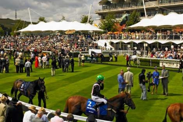 County Turf and Ultra Soil Solutions in the Winners' Enclosure at Goodwood!
