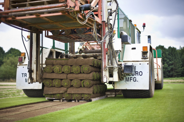 County Turf take on more European Orders